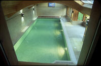 Diamond Pool Finishers Swimming Pool Tilers Mosaic